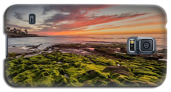 La Jolla Sunset Galaxy S5 Case