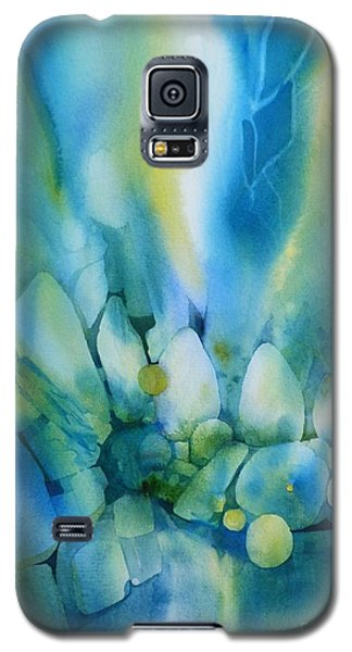 La Lumiere Tombe Galaxy S5 Case by Donna Acheson-Juillet
