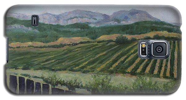 La Rioja Valley Galaxy S5 Case