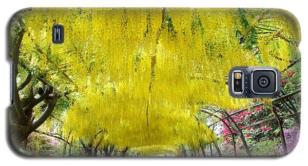 Laburnum Arch, Bodnant Garden Galaxy S5 Case