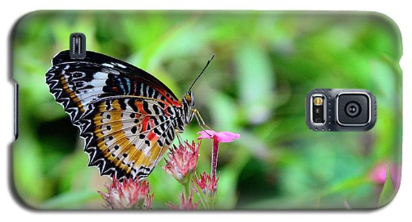 Galaxy S5 Case featuring the photograph Lace Wing Butterfly by Corinne Rhode