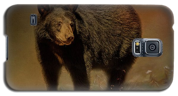 Black Bear In The Fall Galaxy S5 Case