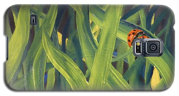Lady Bugs Galaxy S5 Case