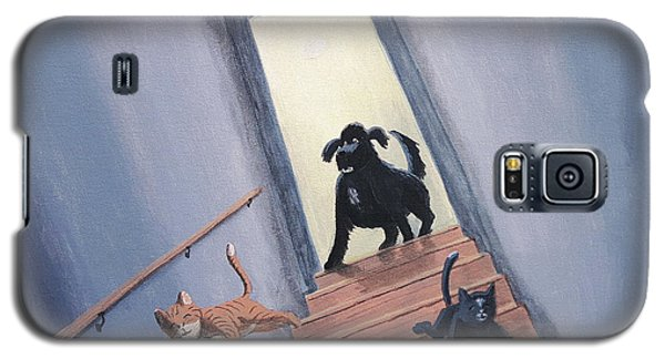 Lady Chases The Cats Down The Stairs Galaxy S5 Case