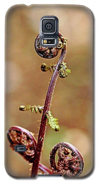 Lady Fern Spirals Galaxy S5 Case