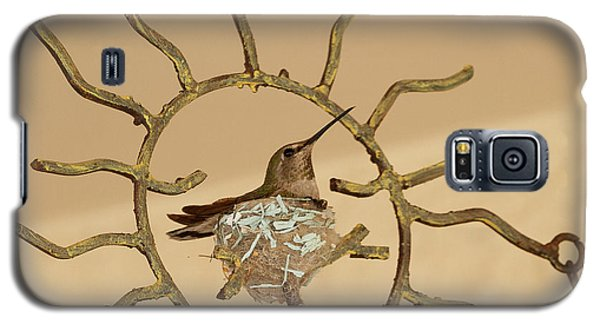 Lady Hummingbird On Her Nest Galaxy S5 Case