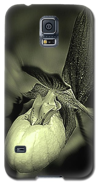 Lady Slipper Orchid Flower Galaxy S5 Case