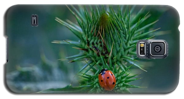 Ladybug On Thistle Galaxy S5 Case
