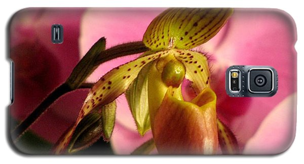 Ladyslipper With Pink Galaxy S5 Case
