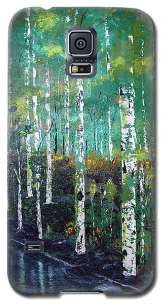 Lake Birch Galaxy S5 Case