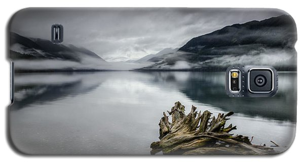 Galaxy S5 Case featuring the photograph Lake Crescent Relic by Dan Mihai