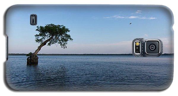 Lake Disston Cypress #2 Galaxy S5 Case by Paul Rebmann