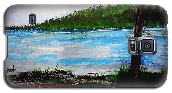 Lake In Virginia The Painting Galaxy S5 Case
