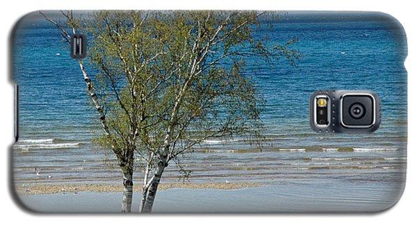 Galaxy S5 Case featuring the photograph Lake Michigan Birch Tree Bench by LeeAnn McLaneGoetz McLaneGoetzStudioLLCcom