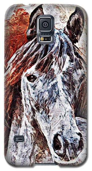 Lakota Galaxy S5 Case