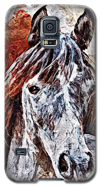 Lakota Galaxy S5 Case