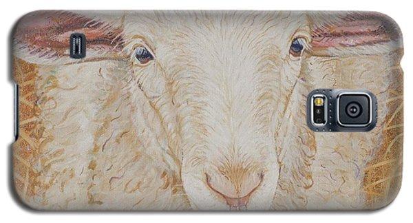 Sheep Galaxy S5 Case - Lamb Of God by Christine Belt