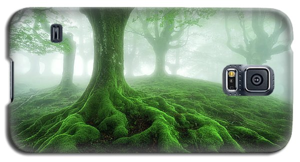 Land Of Roots Galaxy S5 Case