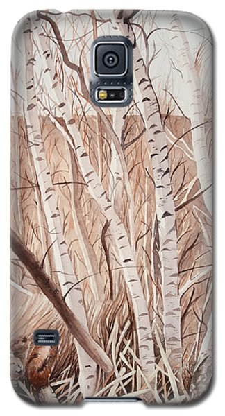 Land Of The Silver Birch Galaxy S5 Case