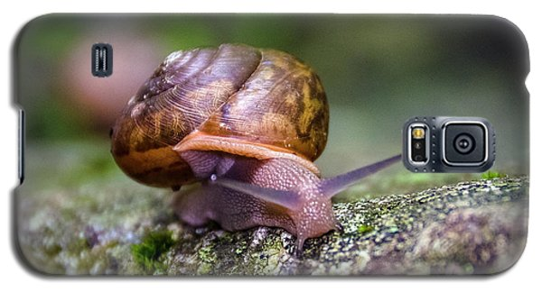 Land Snail II Galaxy S5 Case