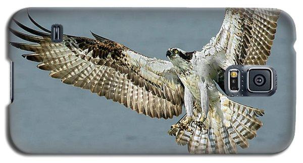 Osprey Approach Galaxy S5 Case