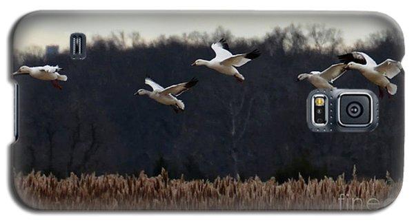 Landing Galaxy S5 Case by Tamera James