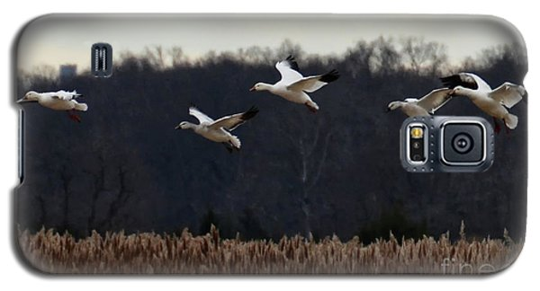 Galaxy S5 Case featuring the photograph Landing by Tamera James