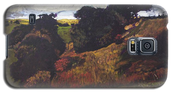 Landscape At Rhug Galaxy S5 Case by Harry Robertson