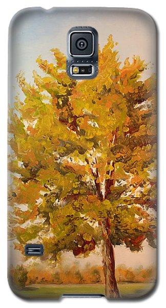 Landscape Oil Painting Galaxy S5 Case