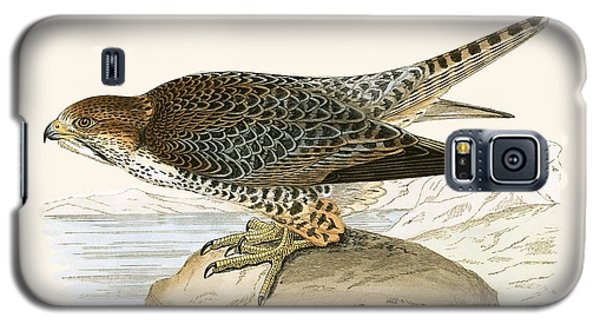 Lanner Falcon Galaxy S5 Case by English School