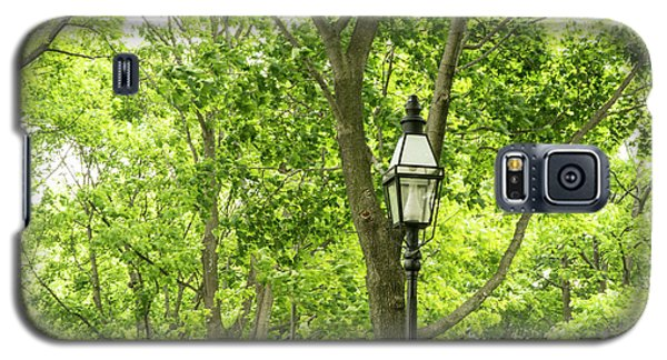 Lanterns Among The Trees Galaxy S5 Case