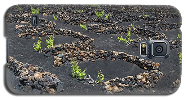 Canary Galaxy S5 Case - Lanzarote Vineyards by Delphimages Photo Creations