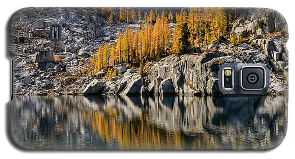 Larch Reflection In Enchantments Galaxy S5 Case