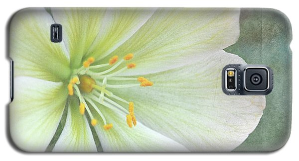 Galaxy S5 Case featuring the pyrography Large Flower by Lyn Randle