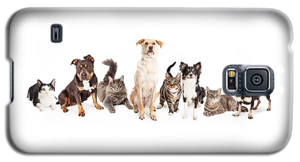 Large Group Of Cats And Dogs Together Galaxy S5 Case