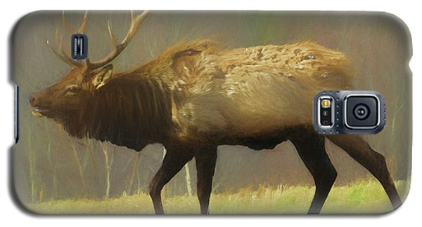 Large Pennsylvania Bull Elk. Galaxy S5 Case