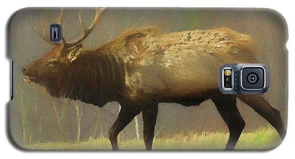 Large Pennsylvania Bull Elk. Galaxy S5 Case