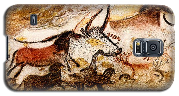 Lascaux Hall Of The Bulls Galaxy S5 Case