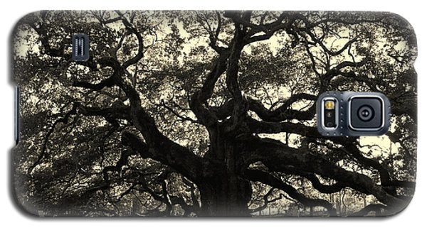 Last Angel Oak 72 Galaxy S5 Case