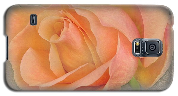 Last Autumn Rose Galaxy S5 Case