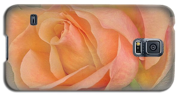 Galaxy S5 Case featuring the photograph Last Autumn Rose by Jacqi Elmslie