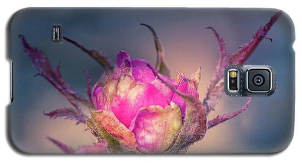 Last Color Of Summer Galaxy S5 Case