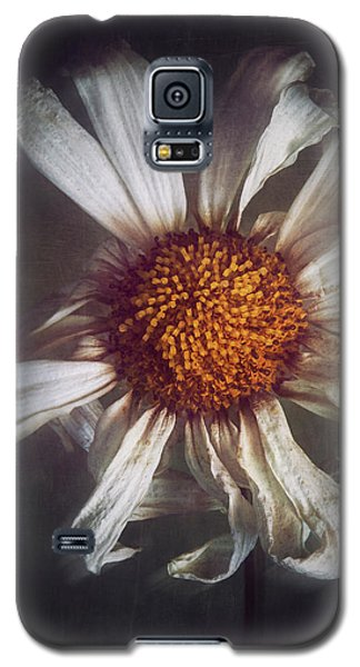 Galaxy S5 Case featuring the photograph Last Dance by Amy Weiss
