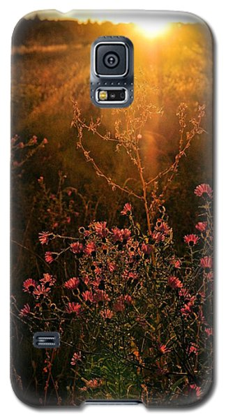 Galaxy S5 Case featuring the photograph Last Glimpse Of Light by Jan Amiss Photography