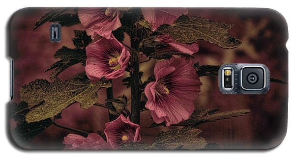Galaxy S5 Case featuring the photograph Last Hollyhock Blooms by Douglas MooreZart