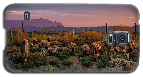 Galaxy S5 Case featuring the photograph Last Light On The Sonoran  by Saija Lehtonen