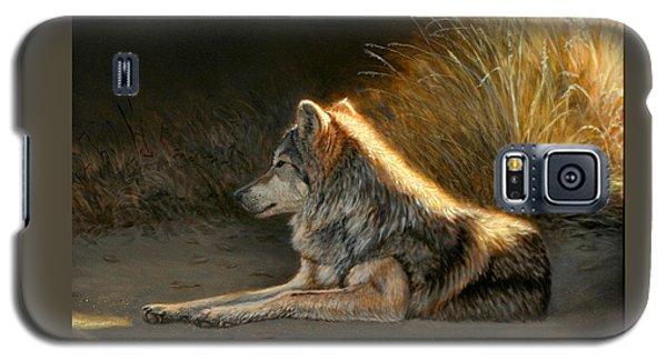 Last Light - Wolf Galaxy S5 Case