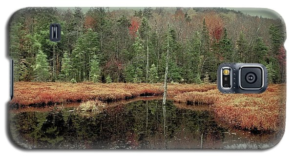 Galaxy S5 Case featuring the photograph Last Of Autumn On Fly Pond by David Patterson