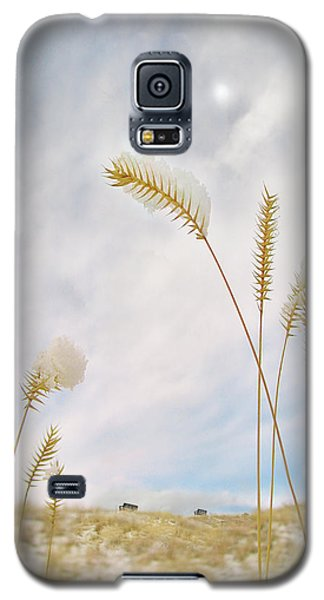 Last Snow Galaxy S5 Case