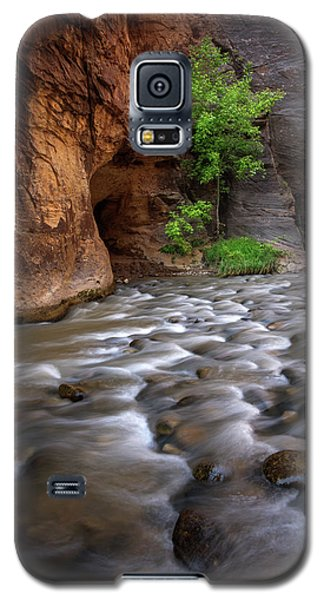 Galaxy S5 Case featuring the photograph Last Stand by Dustin LeFevre